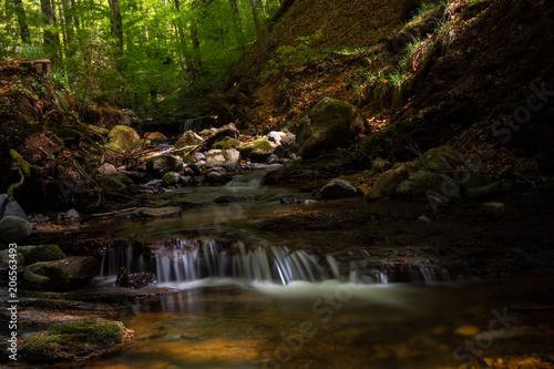 Fotobehang Chocoladebruin Little german canyon at the mountain Rhoen