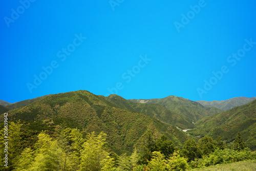 Fotobehang Blauw 初夏新緑風景