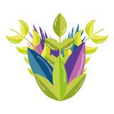 natural plants botanic tropical leaves - 206646072