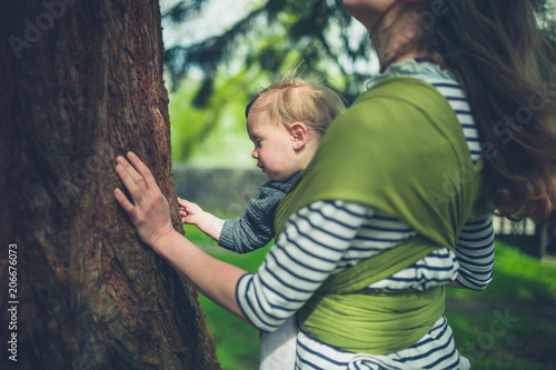 Foto Murales Mother and toddler touching giant redwood