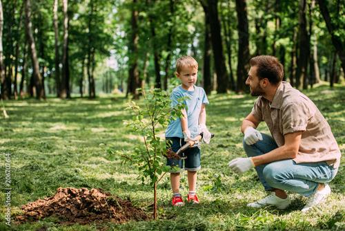 ojciec patrząc, jak syn sadzenia drzewa z łopatą w parku