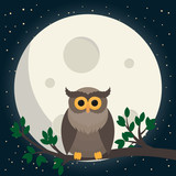 cute owl sit at branch under the moon