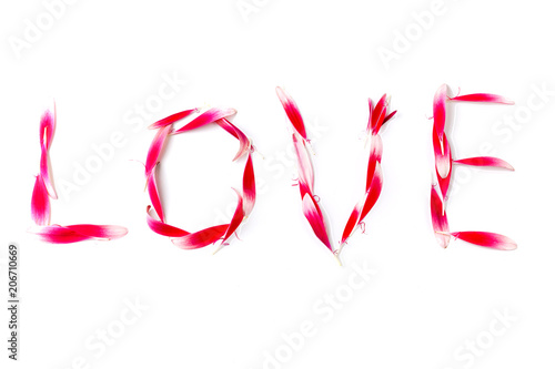 Fotobehang Gerbera word love made out of gerbera flower petals on white background, concept