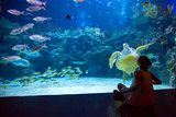 Woman in the oceanarium plays with the turtle - 206724873