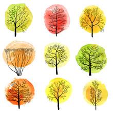Deciduous Trees Sticker