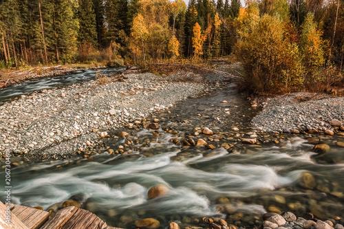 Fotobehang Bergrivier Multa river in Mountain Altai Republic, Russia.