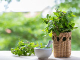 Fresh mint in mortar on table. - 206753430