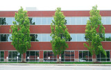 exterior view of office building with green trees in front - 206775846