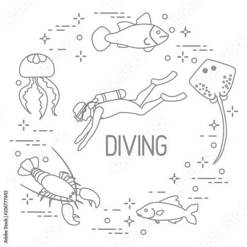 Diver Jellyfish Lobster Stingray Fish