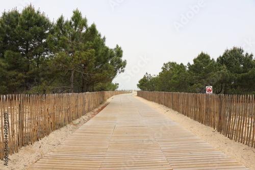Fotobehang Weg in bos chemin d'accès entrée plage