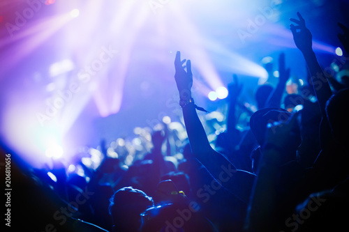 Picture of party people at music festival - 206810656