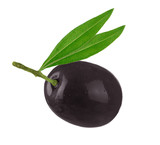 black olive with leaves isolated