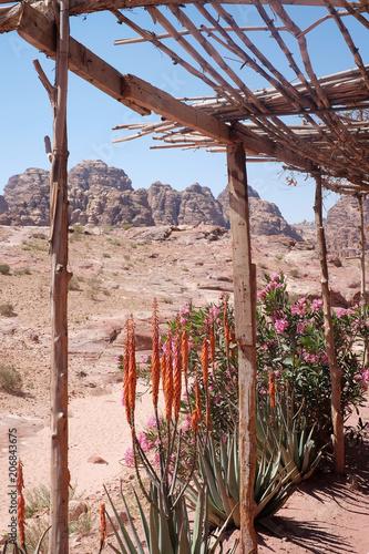 Fotobehang Diepbruine Landschaft Petra Jordanien