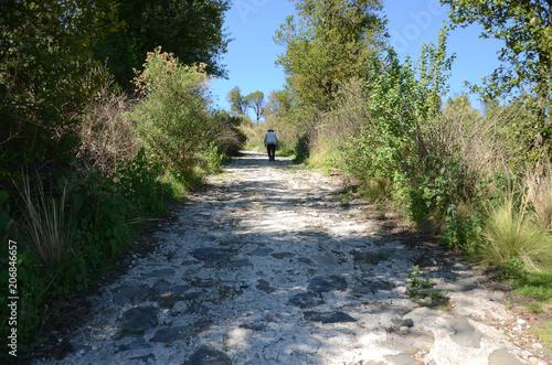 Fotobehang Weg in bos camino piedra hombre 2
