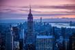new york city landscape