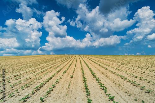 Fotobehang Beige Landschaft Landwirtschaft