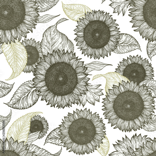 Fototapeta Sunflower vintage seamless pattern. Sunflower retro background. Vector hand drawn illustration.