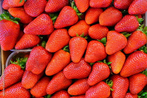 Green baskets of juicy sweet red strawberries at the farmers market