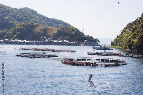 Fotobehang Kyoto 伊根の海