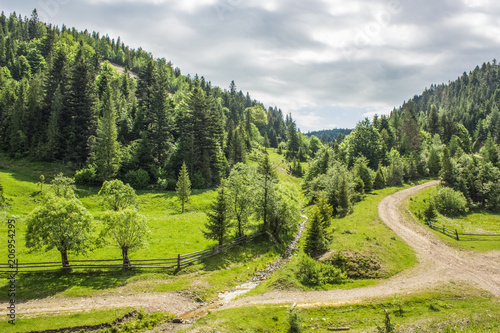 Aluminium Beige green summer forest mountain landscape somewhere on country side