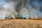 Global Warming. Burning agricultural field, smoke pollution. Image of global and their natural disaster risk. - 206973835