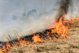 Global Warming. Burning agricultural field, smoke pollution. Image of global and their natural disaster risk. - 206974042