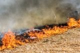 Global Warming. Burning agricultural field, smoke pollution. Image of global and their natural disaster risk. - 206974212