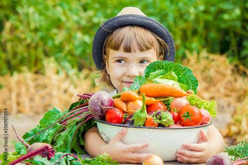 Leinwandbild Motiv Child and  bio vegetables on the farm. Selective focus.