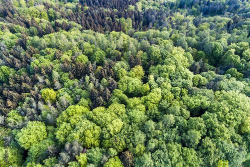 Luftaufnahme, Schwäbischer Wald, Rems-Murr-Kreis, Baden Württemberg, Deutschland