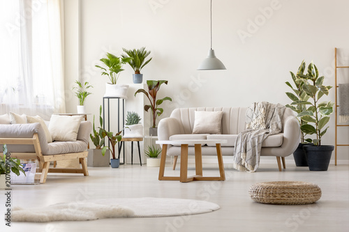 Pufa obok dywanu w jasnym wnętrzu salonu z roślinami i beżową kanapą. Prawdziwe zdjęcie