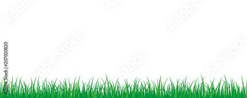 grüne wiese hintergrund - 207020820