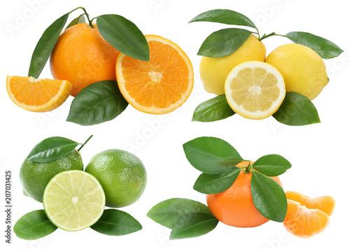 Foto Murales Collage Orangen Zitrone Mandarine Früchte Freisteller freigestellt isoliert