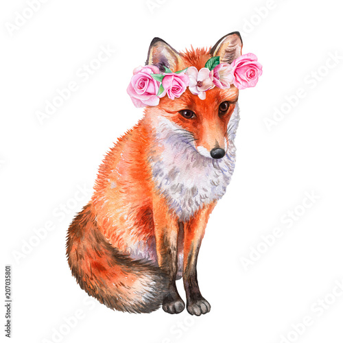 Fox in a flower wreath. Crown with roses. Watercolor. Illustration. Template. Close-up. Clip Art. Handmade Image. Picture - 207035801