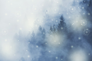 Winter season cloudy forest landscape with abstract snowflakes. © robsonphoto