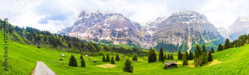 Foto Murales Beautiful Landscape of Grindelwald , Switzerland