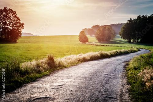 Fotobehang Lente Green field and road