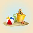 Beachball and bucket for the beach