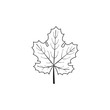 Vector outline grape leaf.