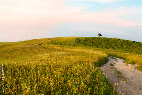 Canvas Toscane Tuscany landscape with countryside road at sunset near Siena