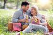 Leinwanddruck Bild - Couple on picnic