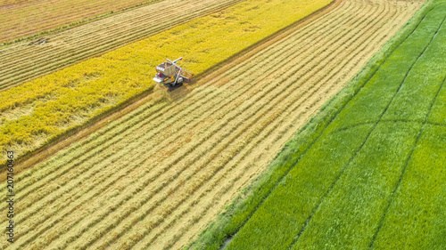 Foto Murales Combine harvester machine with rice farm.Aerial view and top view. Beautiful nature background.