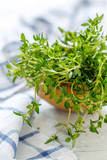 Fresh thyme in a wooden bowl. - 207175239