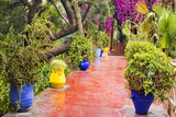 colored vases on the pathway in garden in Morocco - 207190015