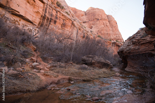 Canvas Zalm Landscape inside a canyon in Moab, Utah,