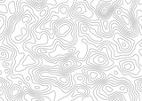 Topographic map backdrop. Conditional geography scheme and the terrain path. Contour line abstract background. - 207204809