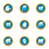 Chimpanzee icons set. Flat set of 9 chimpanzee vector icons for web isolated on white background