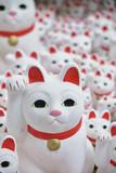 Maneki-neko lucky cats at Goutokuji Shrine, Tokyo, Japan
