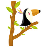 adorable toucan animal in the tree branch leaves - 207240609