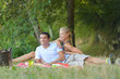 couple in park on picnic