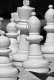 Chess pieces on the playing field.